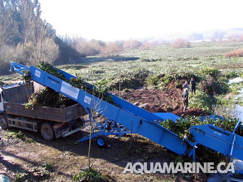 Shore Conveyors – AQUAMARINE – Aquatic Weed Harvesting