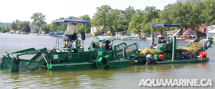 Aquamarine Aquatic Transporters