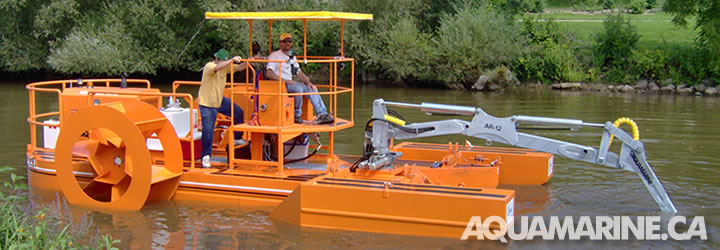 Aquamarine Crane Boat